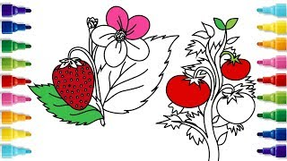 How to Draw a Strawberry and a Tomato Plant | Coloring Pages For Chilldren | YZArts