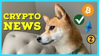 AMD Navi GPUs For Mining? Coinbase adds ZEC | Vertcoin 51% attack | ETCDev out of funds