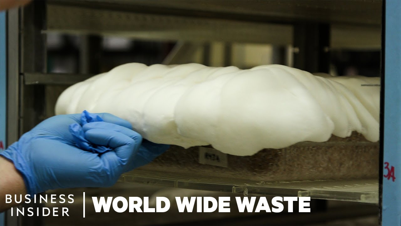 Could Mushroom Packaging Replace Styrofoam? | World Wide Waste