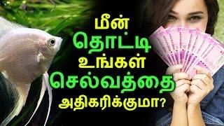 மீன் தொட்டி உங்கள் செல்வத்தை அதிகரிக்குமா | Tamil Facts | Latest News | Kollywood Seithigal