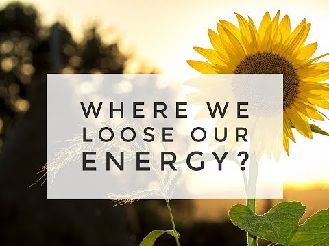 Where we loose our energy? - Dr. Partap Chauhan and Egle Terekaite