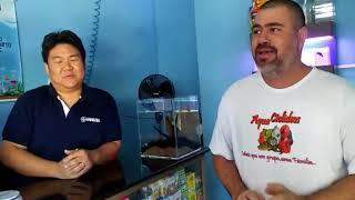 AquaCiclideos - Visitando as lojas de aquarismo de Brasília - Parte 4