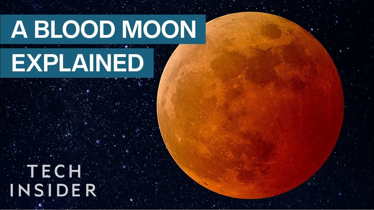 Under a Blood Moon: A Look at Famous Lunar Eclipses in History