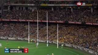 AFL 2013 Preliminary Final Hawthorn Vs Geelong