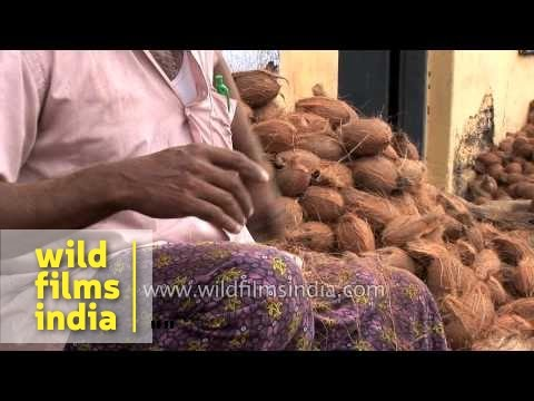 Coconut sellers crack coconuts in deft fast action, in Kerala