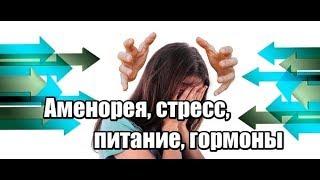 Аменорея. Лечение аменореи. Функциональная гипоталамическая аменорея. Причины аменореи.