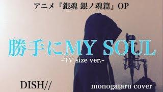 歌詞付き 勝手にMY SOUL TV size ver DISH monogataru cover