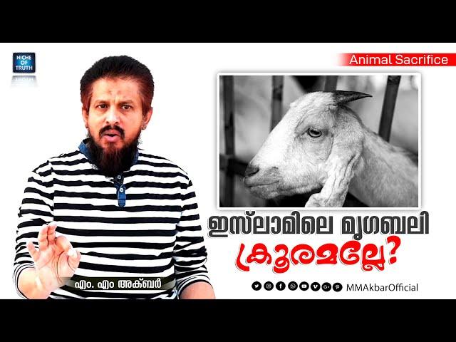 ഇസ്ലാമിലെ മൃഗബലി ക്രൂരമല്ലേ? MM Akbar   Isn't the Animal Sacrifice in Islam cruel???