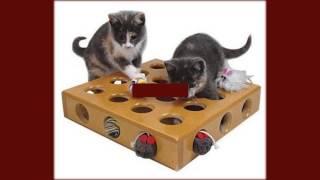 купить игрушки для кошек москва