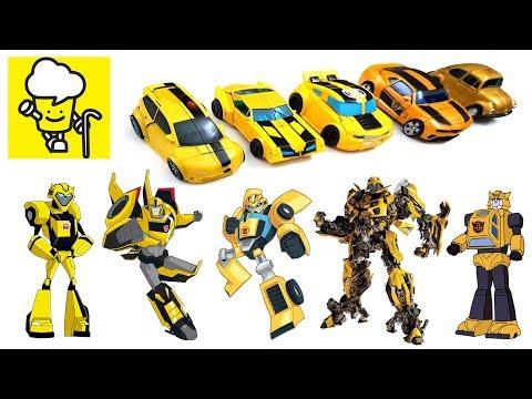 Different Bumblebee Transformer