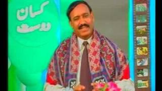 Rural poultry supplement feed Dr.Ashraf Sahibzada