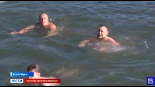 Ессентукские моржи встретили новый год в холодной воде