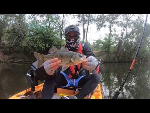 Nepean River Bass Fishing 12/19