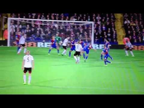 Amazing Goal Steve Sidwell  Crystal Palace 1-2 Fulham
