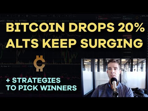 Bitcoin Pulls Back 20% - Altcoins Pumping, Roger Ver, John McAfee, Ether Delta Hack - CMTV Ep 111