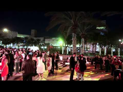 Harvey Nichols - Dubai Gala at the Dubai International Film Festival