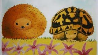En Pues i la tortuga poruga