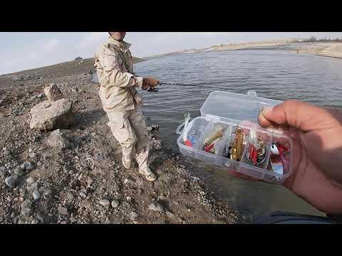 ловля жерешков в Армении ,Джрапи