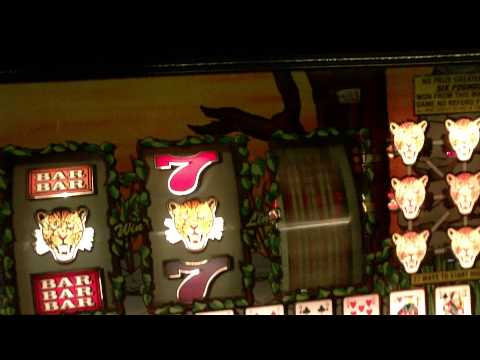 Video Slot nuts casino no deposit codes 2016