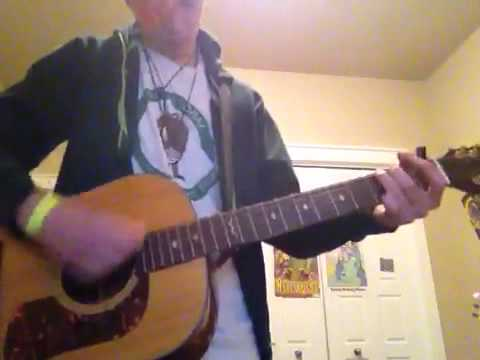 Holland, 1945 12-string guitar cover