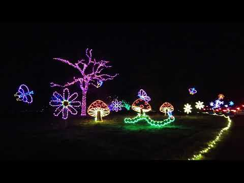 Christmas Lights at Norfolk Botanical Gardens