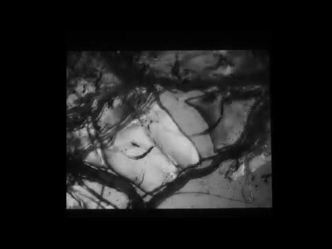Begüm Tarako - Uçsuz Tango (Enstrümantal)