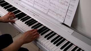 인생의 회전목마 피아노(초급)