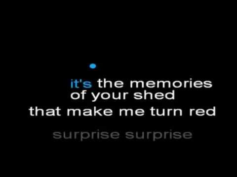 The Sundays - Here's Where The Story Ends [ lyrics video ]