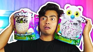 EXPERIMENTING WITH HATCHIMALS!
