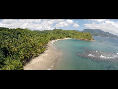 Dominica (The Nature Island in 4K)