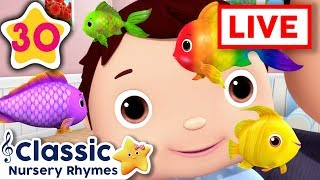 Wheels On The Bus Underwater | LIVE | Baby Songs | +More Classic Nursery Rhymes | Little Baby Bum