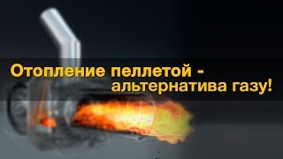 видео НПО