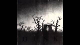 Dusk - Envision The Terror