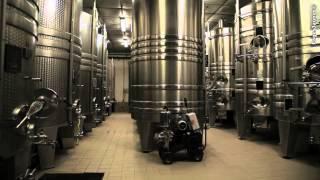 Le Champagne Rémy MASSIN & Fils se situe à  Ville-sur-Arce dans l'Aube (10)