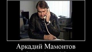 Анатомия фальшивки - Аркадия Мамонтова