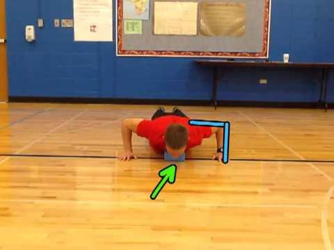 Fitnessgram Push-up Test