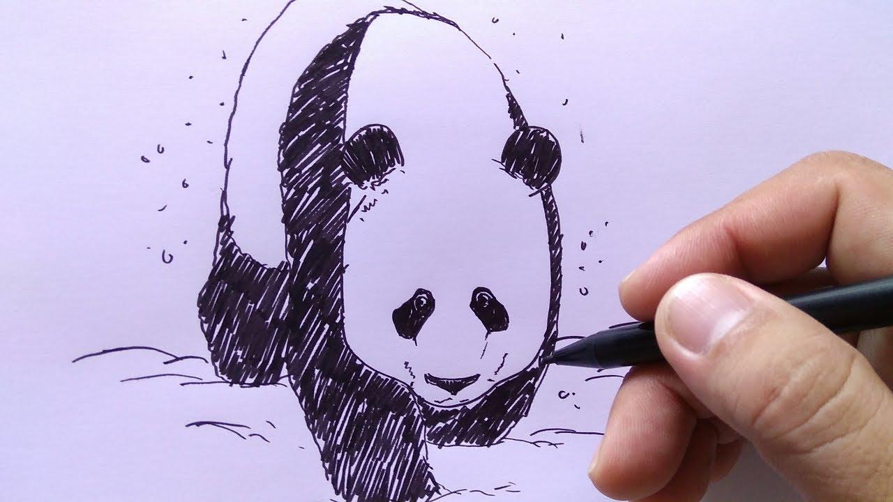 Cara Menggambar Panda Yang Lucu