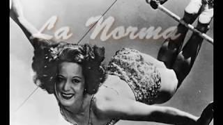 Norma Fox - - 2014 WAS Legend (Professional Acrobatics)