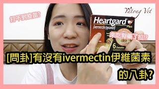 伊維菌素ivermectin可以治療新冠肺炎?狗狗藥救萬物 牙痛獸醫