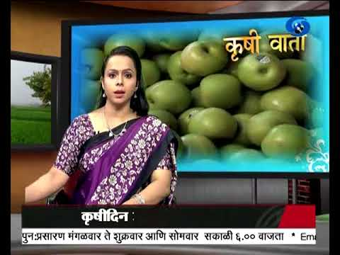 Krishivarta Bajarbhav - 02 July 2018 - कृषीवार्ता बाजारभाव