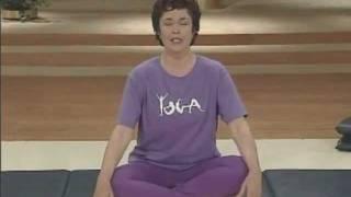 Lilias Yoga - Cardio Challenge (10)