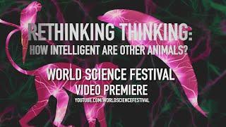 Rethinking Thinking - Premieres Jan. 31st.