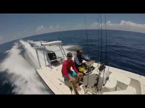 Offshore Fishing Fort Pierce Florida Sailfish And Dolphin