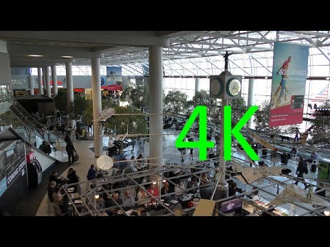 A 4K Tour of Charlotte Douglas International Airport (CLT)