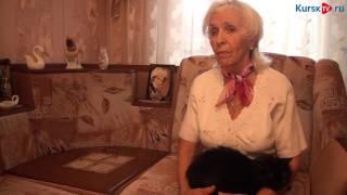 Курская пенсионерка спасла жизнь слепому котенку