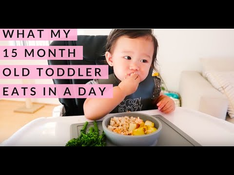 WHAT MY 15 MONTH OLD TODDLER EATS IN A DAY | FOOD DIARY