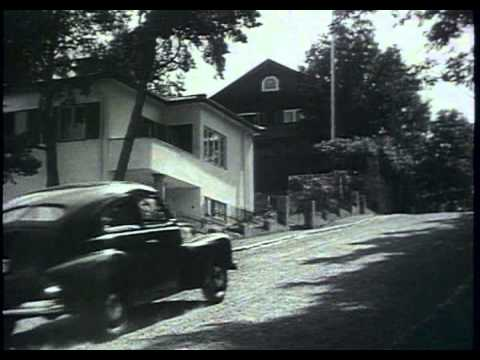 Volvo 444 1 Commercial