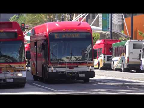 LONG BEACH TRANSIT BUS VIDEO COMPILATION PART 1 OF 2