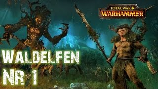 Lets Play Total War Warhammer: Realm of The Wood Elves (Deutsch | Sehr Schwer | HD) 01