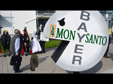 Monsanto ordered to pay $81 million to cancer victim who used Roundup weedkiller